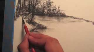 getlinkyoutube.com-How to draw Rainforest Trees