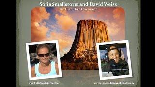 getlinkyoutube.com-Sage of Quay Radio - Sofia Smallstorm and David Weiss - The Giant Tree Discussion (Aug 2016)
