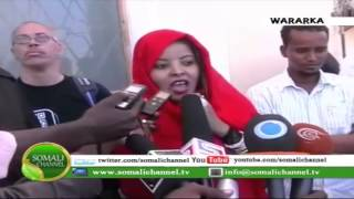 Falis Abdi
