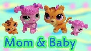 getlinkyoutube.com-LPS Tiger Poodle Dog Mom Baby Sets Mommies Babies Bobblehead Littlest Pet Shop Review