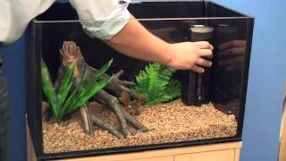 getlinkyoutube.com-Setting up a Goldfish Aquarium