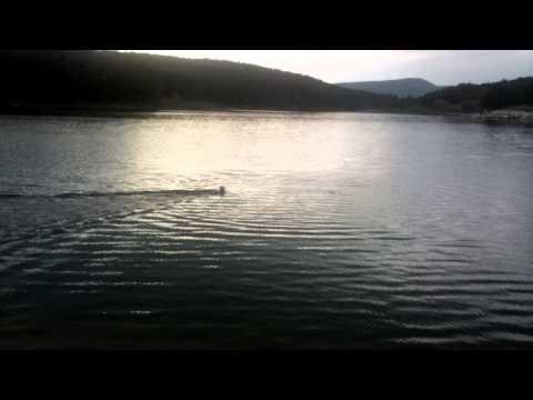 Una Posavski gonic donosi iz vode.mp4