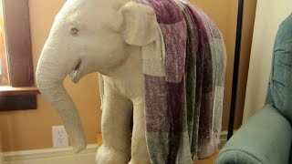 getlinkyoutube.com-Paper Mache Baby Elephant Sculpture - How to Make It
