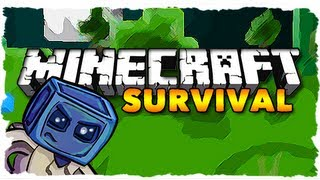 Minecraft Survival - EPIC STORAGE ROOM! (Ep. 307)