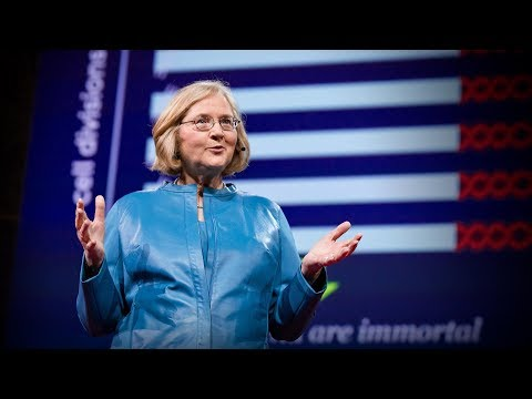 The science of cells that never get old | Elizabeth Blackburn - YouTube