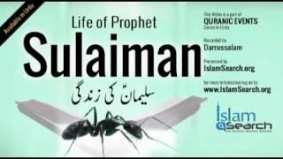 Events Of Prophet Sulaiman's Life (Urdu)