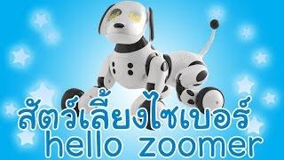 getlinkyoutube.com-สุนัขหุ่นยนต์ สัตว์เลี้ยงไซเบอร์ hello zoomer