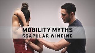 getlinkyoutube.com-Mobility Myths with Dr. Quinn | Scapular Winging | JTSstrength.com