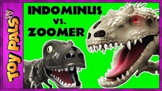 getlinkyoutube.com-Jurassic World Indominus Rex ZOOMER DINO vs Oynx, MiPosaur Robotic Dinosaurs Comparison + Toy Review