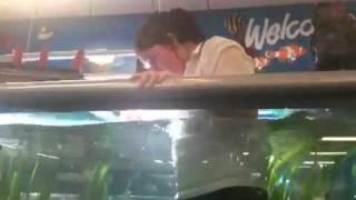 getlinkyoutube.com-Girl swims in fish tank