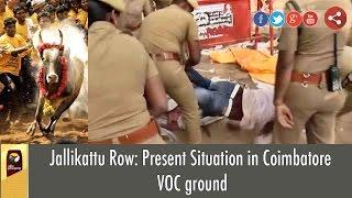 Jallikattu Row: Present Situation in Coimbatore VOC ground