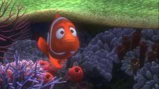 getlinkyoutube.com-Gdzie jest Nemo - Finding Nemo (2003) - Trailer Zwiastun PL HD
