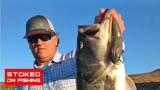 getlinkyoutube.com-Largemouth Bass Fishing With A Rat