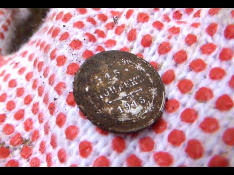 Коп монет в чудо-лесу