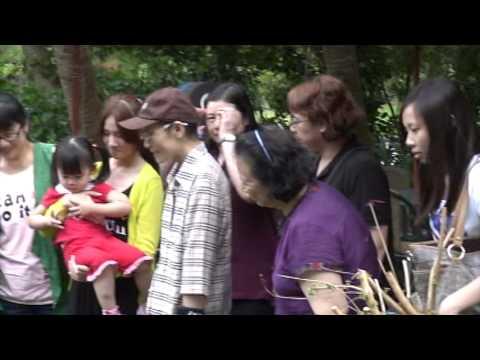 大楊梅吉娃娃犬舍 - YouTube