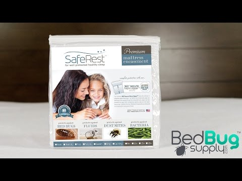 SafeRest Bed Bug Mattress Cover Review