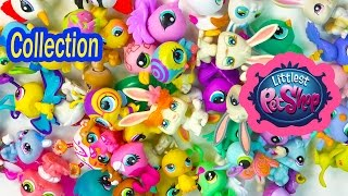 getlinkyoutube.com-LPS Collection Tour Haul Video Littlest Pet Shop Bunny Rabbits Bugs Birds Cookieswirlc Part 2