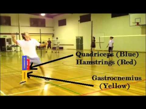 Bio-mechanics Of The Badminton Smash - School Project