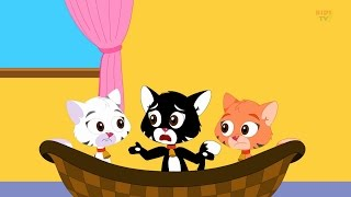 getlinkyoutube.com-Comptines et Chansons Pour Enfants Collection | comptines anglaises | Trois petits chatons