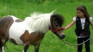 getlinkyoutube.com-Sissi - Mein kleines Pony