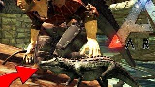 getlinkyoutube.com-Ark Survival Evolved - BABY KAPROSUCHUS, KAPROSUCHUS BREEDING S3E9 (Ark Update Gameplay)