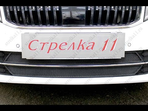 Защита радиатора SKODA OCTAVIA (A7) III рестайлинг с 2017г.в. (Черный) - strelka11.ru