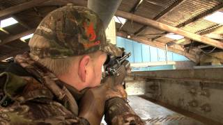 Airgun Hunting - Shooting feral pigeons with a Daystate Airwolf in Scotland