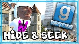 getlinkyoutube.com-Garry's Mod Bird Mod! - Gmod Hide and Seek Funny Moments - Flying, Elevator of Doom!