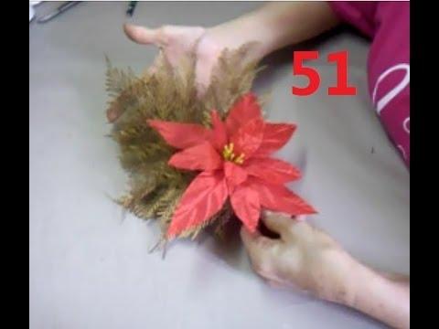 AULA 51: Flor de Natal, Poinsettia, Bico de Papagaio ou Estrela do Natal