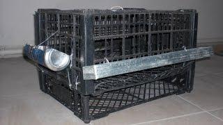 getlinkyoutube.com-Клетка для перепелов совсем бесплатно за 40 минут. Quail cage