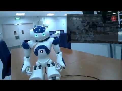 Controlling NAO From Google Glass
