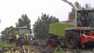 getlinkyoutube.com-Mais hakselen 2015 | Stuck in the mud | Case IH Puma CVX 225 + Claas Axion 820 Cmatic | NL.