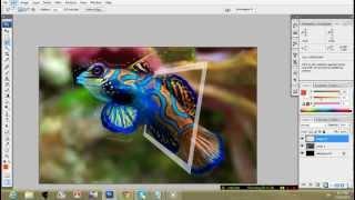 getlinkyoutube.com-Photoshop Tutorial - Out Of Bound Effecting සිංහලෙන්