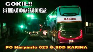 GOKIL&BIKIN HERAN.!! diKejar sampe PAMER GOYANGAN. PO Haryanto HM 023 vs SDD Karina width=