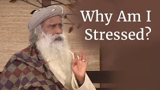 getlinkyoutube.com-Why Am I Stressed? - Sadhguru