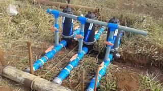 Gotejo Milho Irrigação