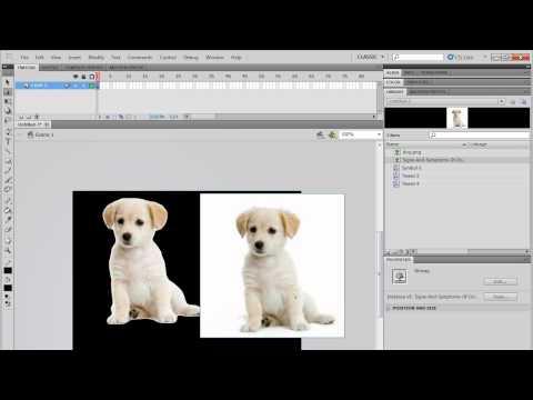 Aprenda a usar o Flash CS5 - Aula 8 -- Importando imagens