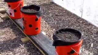 getlinkyoutube.com-Rain Gutter Garden Test