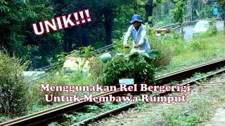 getlinkyoutube.com-UNIK!!! Menggunakan Rel Bergerigi Untuk Mengangkut Rumput