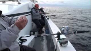 2011年12月 玄界灘  『 落し込み釣り 入門 』  第二成幸丸