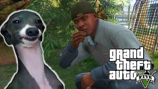"getlinkyoutube.com-GTA 5 - Peyote ""Animal"" Plant Locations - ""Play As Animals"" Episode 2 (GTA V Gameplay)"