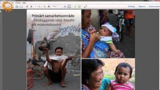 GMC 15 - Sverige och Indonesien möter glesbygdens utmaningar tillsammans
