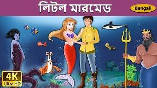 লিটল মারমেড | Little Mermaid In Bengali | Bangla Cartoon | Bengali Fairy Tales