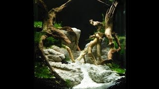 getlinkyoutube.com-Aquascape   Aquarium Setup    Manten Stone ADA