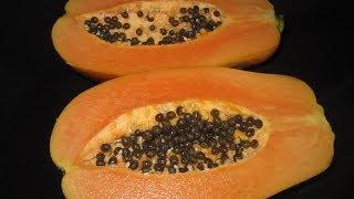 getlinkyoutube.com-Beneficios de comer papaya.