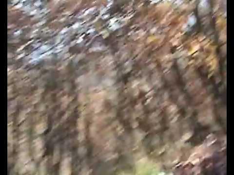 Κυνήγι μπεκάτσας στα Γρεβενά (3ο μέρος)