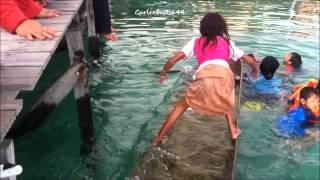 Amazing Bajau Girl Saves Family In capsized boat. Sea gypsies Philippines..