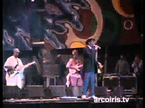 Misty In Roots - Live At Rototom Sunsplash,Udine