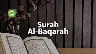 Juz 1 Surah Al Baqarah سورة البقرة - Abu Usamah ᴴᴰ width=