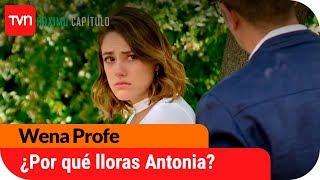 ¿Por qué Antonia está llorando? | Avance Wena Profe - E105